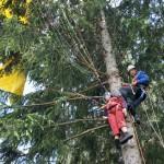 Rettung eines Gleitschirmfliegers aus dem Baum - Bild: www.badische-zeitung.de