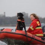 Rettungshundestaffel DLRG - Bild: www.halternerzeitung.de