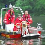Rettungshund DLRG - Bild: neckargemuend.dlrg.de